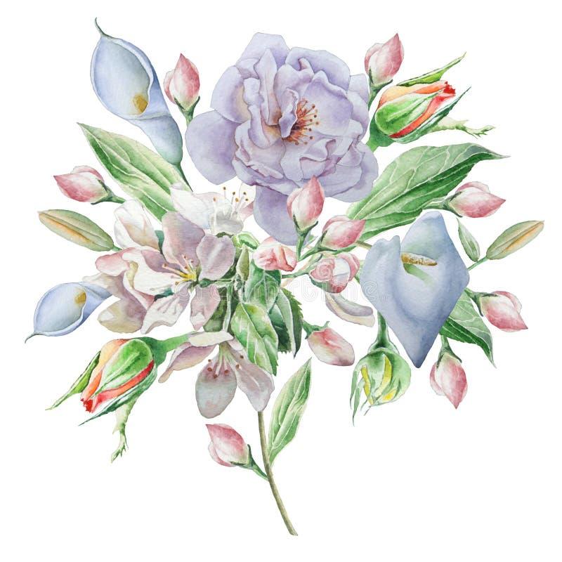 Blom- kort med blommor Steg calla blomning för flygillustration för näbb dekorativ bild dess paper stycksvalavattenfärg stock illustrationer