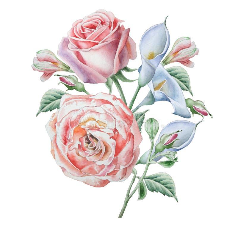 Blom- kort med blommor Steg calla för flygillustration för näbb dekorativ bild dess paper stycksvalavattenfärg vektor illustrationer