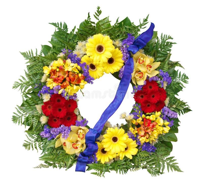 blom- kran royaltyfri bild