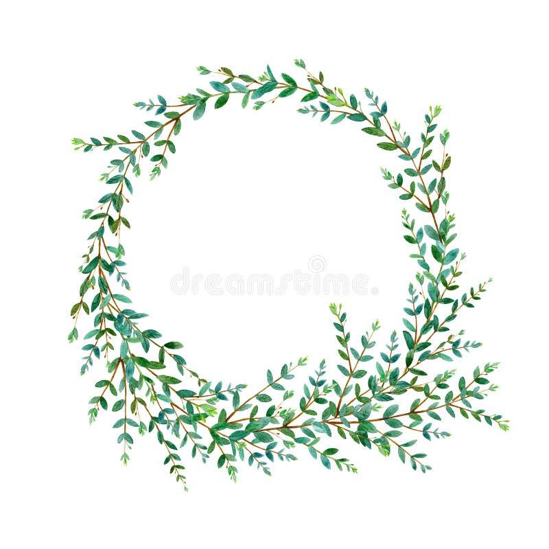 Blom- krans Girland med eukalyptusfilialer vattenf?rg vektor illustrationer