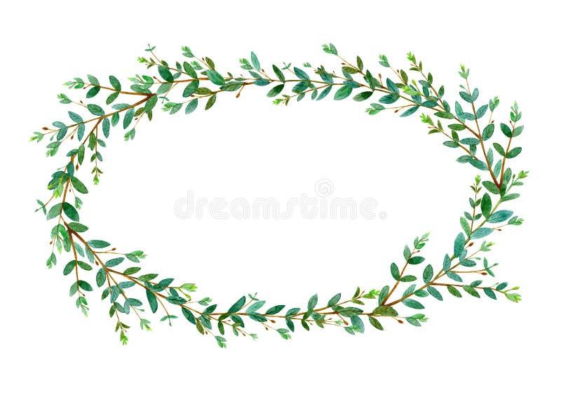 Blom- krans Girland med eukalyptusfilialer vattenf?rg royaltyfri illustrationer