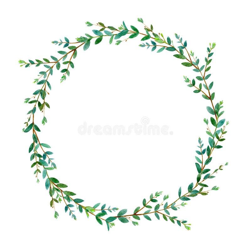Blom- krans Girlanden av en eukalyptus förgrena sig Ram av örter stock illustrationer