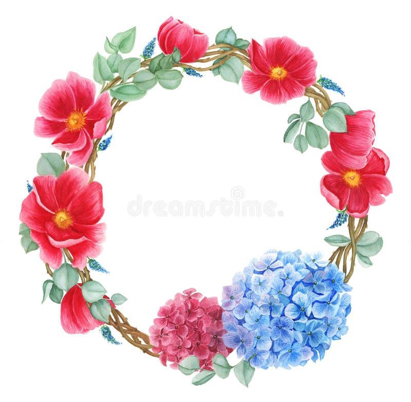 Blom- krans med röda anemoner, röd och blå vanlig hortensia och gröna sidor, vattenfärgmålning vektor illustrationer