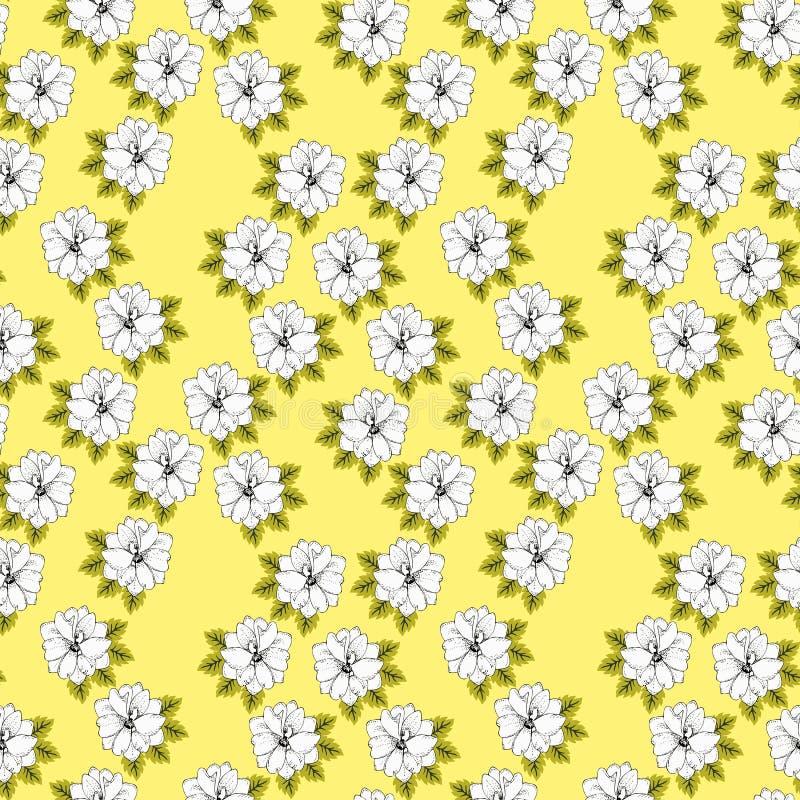 Blom- modell för grafisk sommar, mjuka vita riddarsporreblommor som isoleras av solig gul bakgrund seamless vektor för bakgrund stock illustrationer