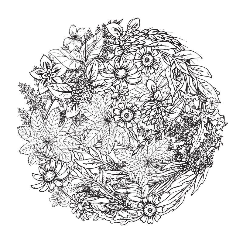 Blom- modell för härlig monokrom vektor i klotterstil vektor illustrationer