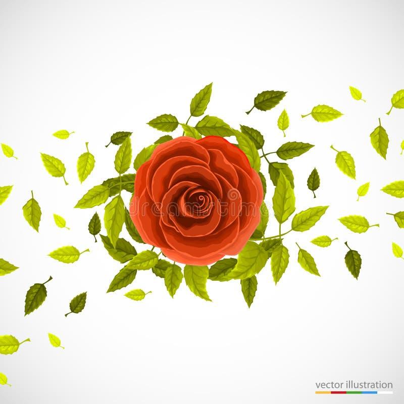 Blom- modell med rosa och blad vektor illustrationer
