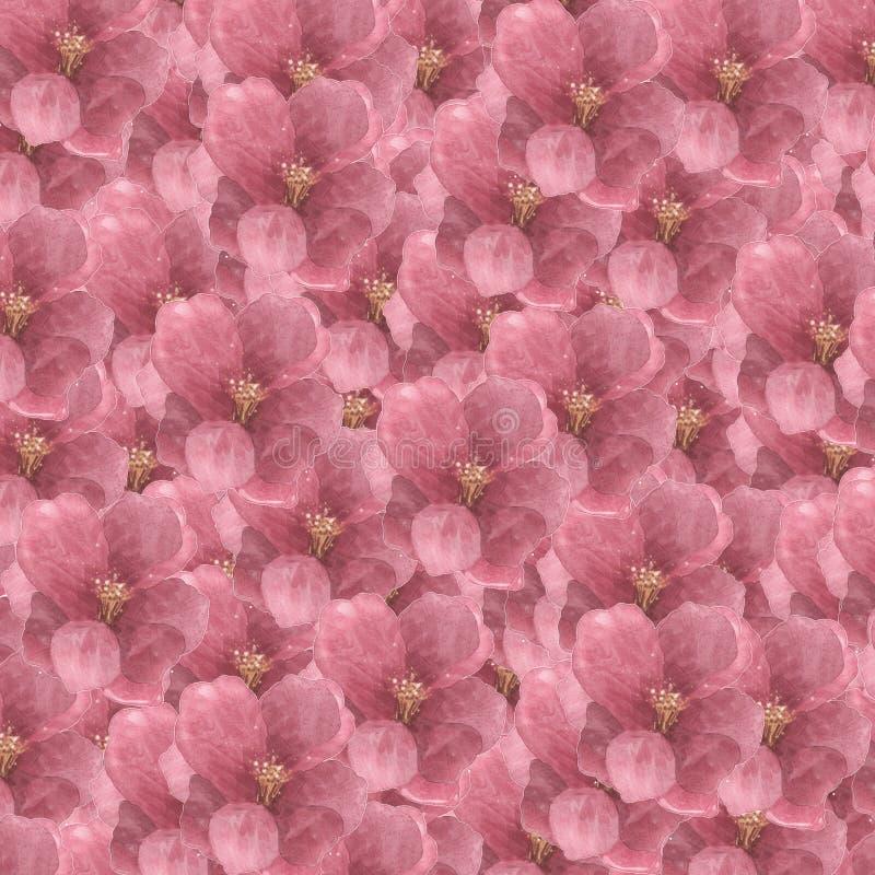 Blom- modellram f?r fyrkant med vanliga hortensian - dekorativa blommor vektor illustrationer