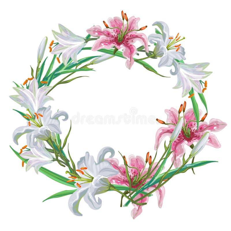 Blom- ram av vita och rosa liljor också vektor för coreldrawillustration vektor illustrationer