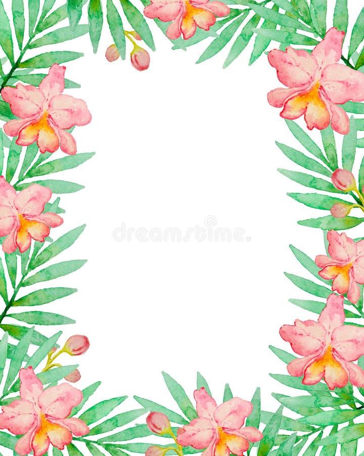 Blom- ram med rosa vattenfärgorkidér royaltyfri illustrationer