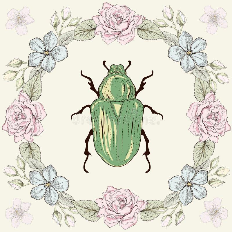 Blom- ram och skalbagge royaltyfri illustrationer