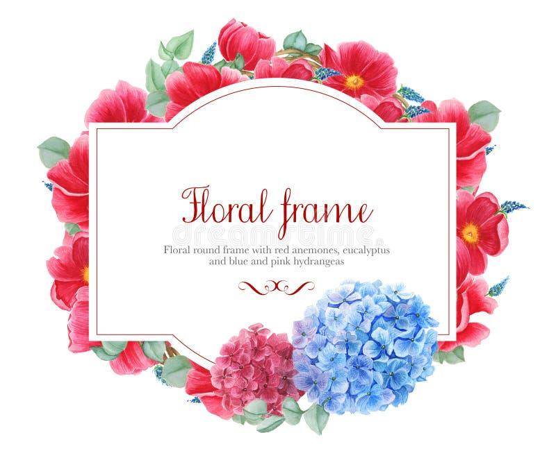 Blom- ramar med röda anemoner, rosa färg- och blåttvanlig hortensia och filialer av eukalyptuns, vattenfärgmålning royaltyfri illustrationer