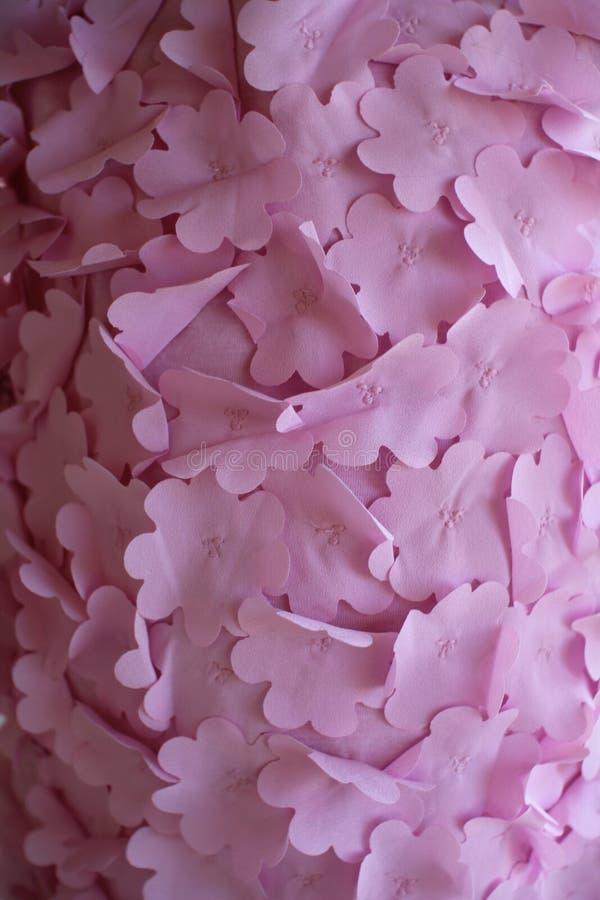 blom- rosa textur royaltyfri foto