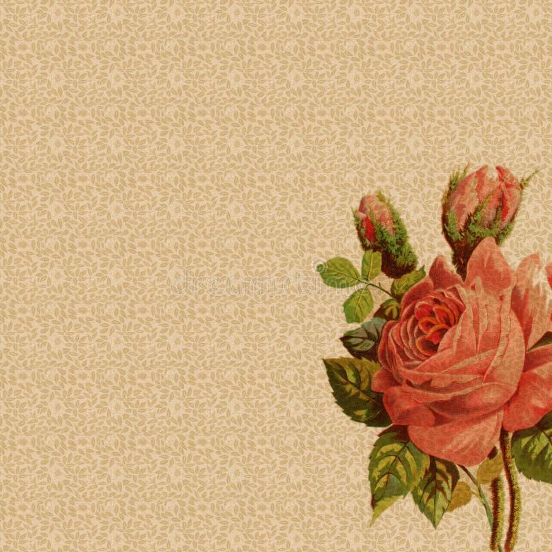 blom- rose tappning för bakgrundsgarnering royaltyfri illustrationer