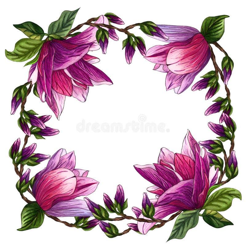 Blom- rund krans med magnoliablommor Krans ramblommor vattenfärg stock illustrationer
