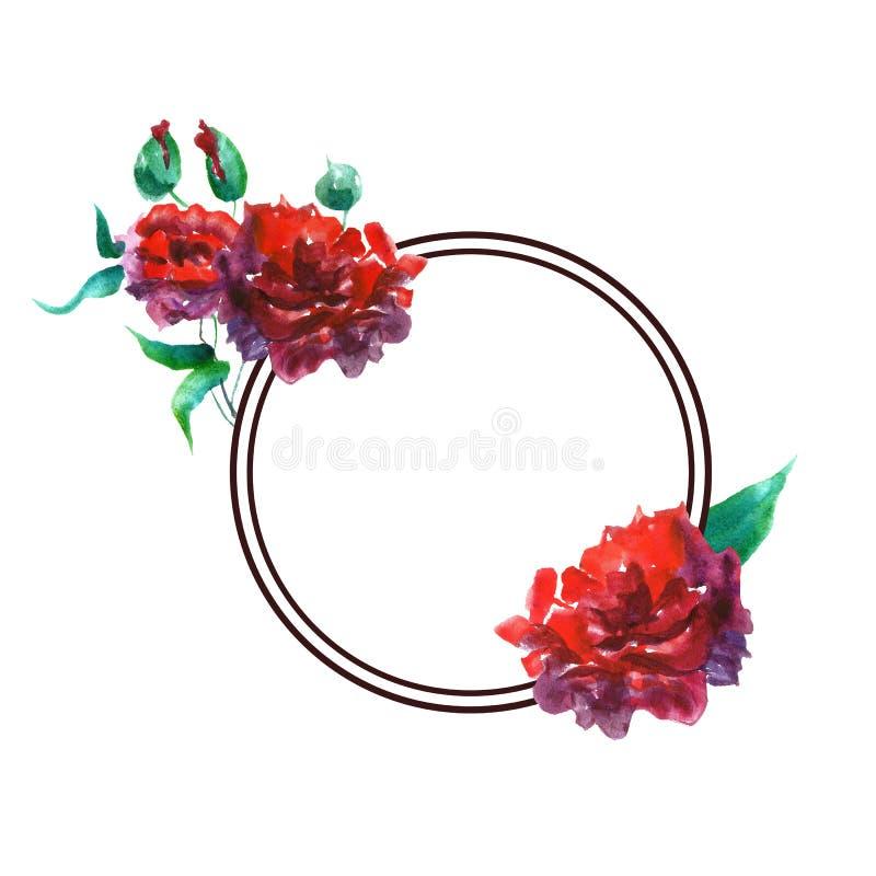 Blom- rund ram för vattenfärgvår med röda rosor Handen målade illustrationen för tappningblommakransen vektor illustrationer