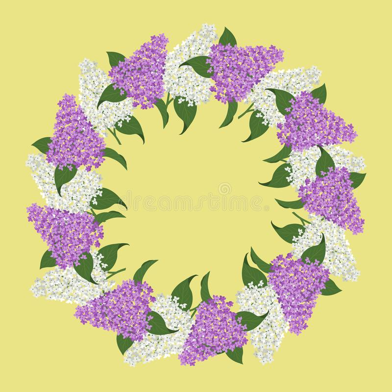Blom- rund ram från lila Den vita och purpurfärgade lilan blommar med gröna sidor på en gul bakgrund royaltyfri illustrationer