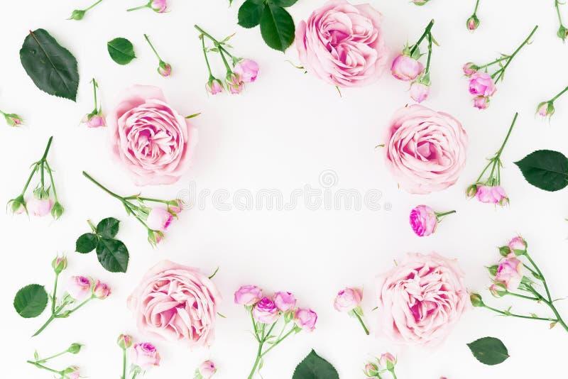Blom- rund ram med pastellfärgade rosor och sidor på vit bakgrund Lekmanna- lägenhet, bästa sikt green för bakgrundsdesignram arkivfoto