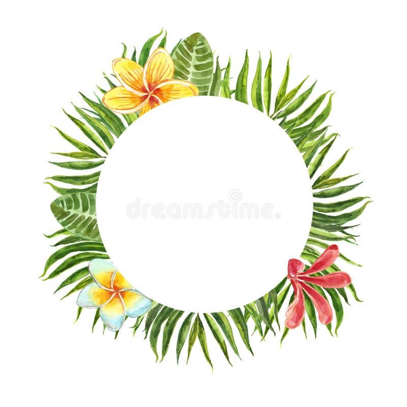 Blom- rund ram med tropiska gr?na l?vverk- och frangipaniblommor som isoleras p? vit bakgrund Palmblad- och blommabaner vektor illustrationer