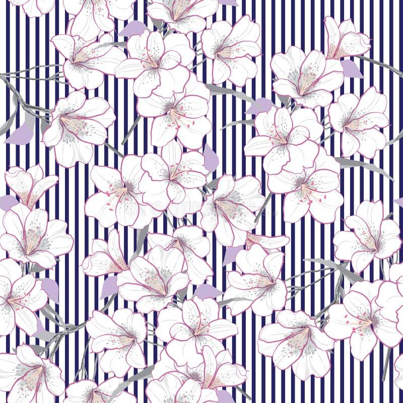 Blom- sömlös modell för sommarvektorträdgård Patte för vita blommor royaltyfri illustrationer