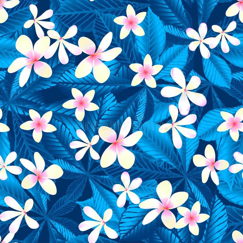 Blom- sömlös modell för tropisk frangipani royaltyfri illustrationer
