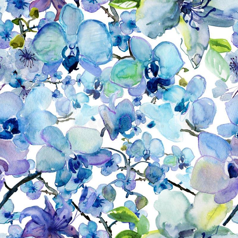 Blom- sömlös modell för vattenfärg med orkidéblommor vektor illustrationer