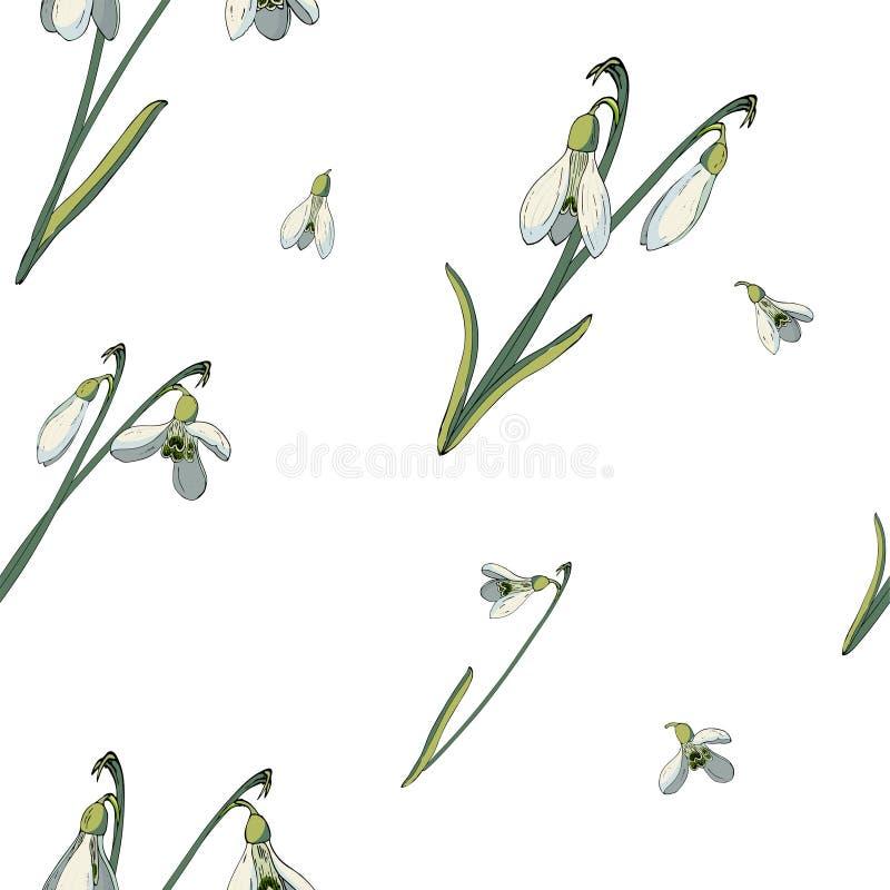 Blom- sömlös modell för vektor med snödroppar royaltyfri illustrationer