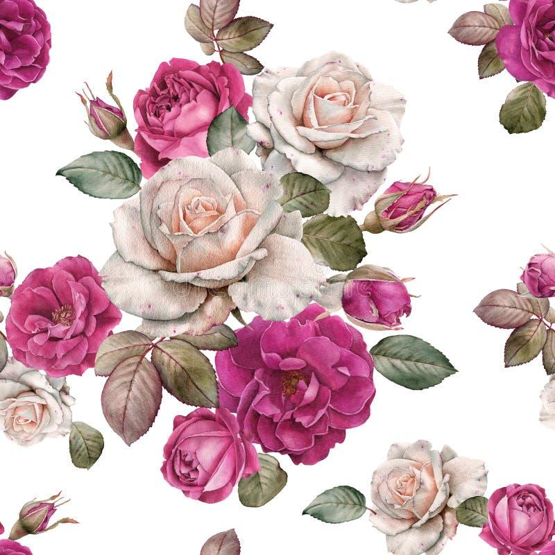Blom- sömlös modell med vattenfärgrosor och sidor stock illustrationer