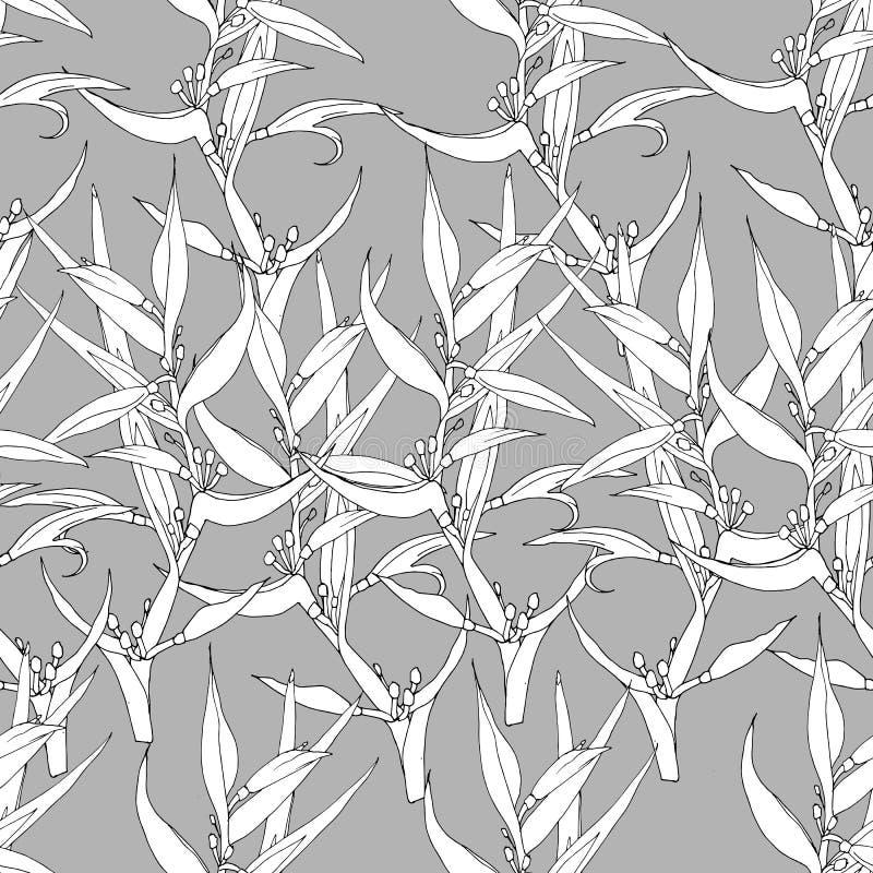 Blom- sömlös modell, vita blommor på en grå bakgrund royaltyfri illustrationer