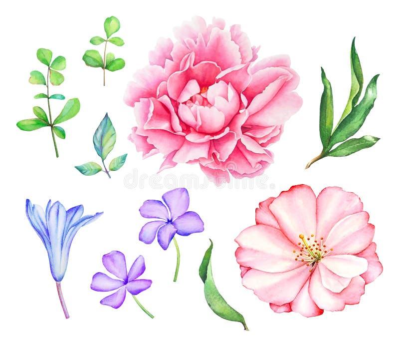 Blom- samling med rosa färg- och blåttblommor stock illustrationer