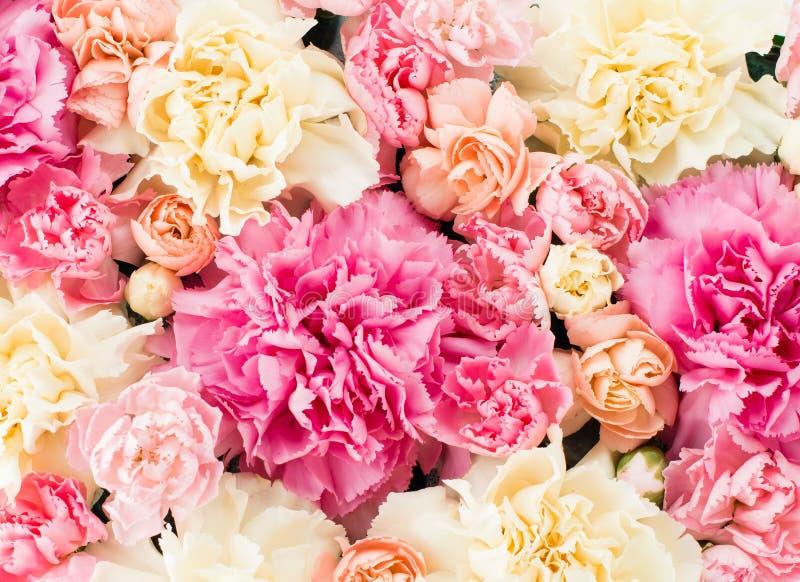 blom- sammansättning för närbild med pioner och rosor royaltyfria foton