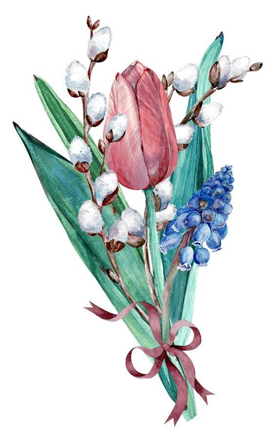 Blom- sammansättning för påsk med pilbågen, tulpan, pussypilen och muscarien för flygillustration för näbb dekorativ bild dess pa stock illustrationer