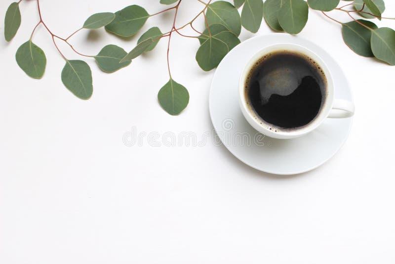 Blom- sammansättning som göras av gröna eukalyptussidor och filialer på vit träbakgrund med koppen kaffe kvinnligt royaltyfri foto