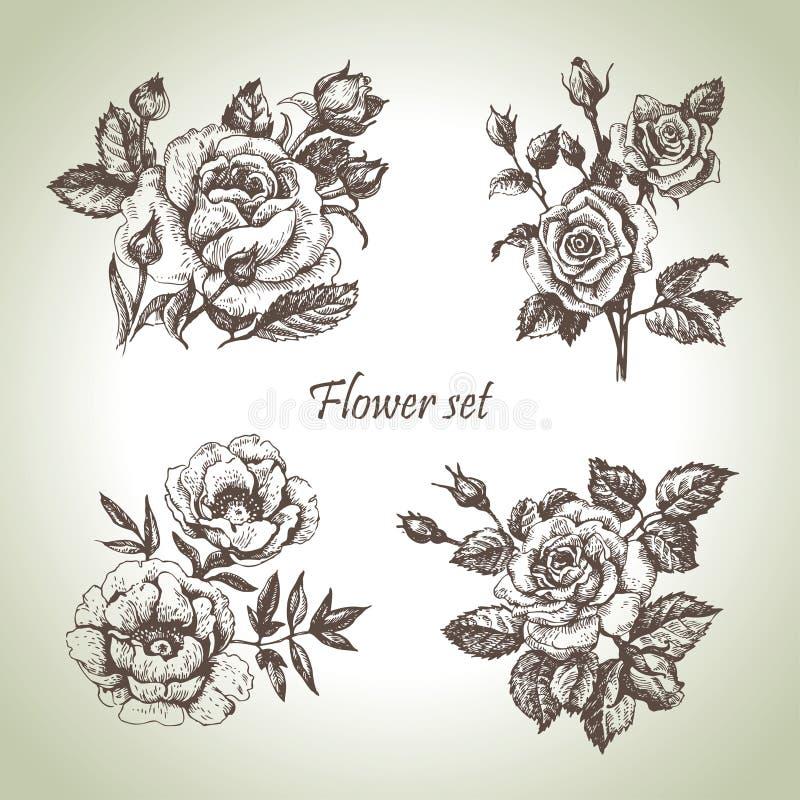 blom- set vektor illustrationer