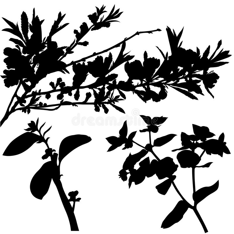 blom- silhouette 03 vektor illustrationer