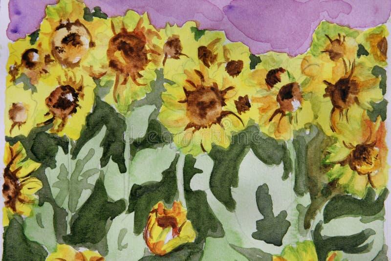 blom- solrosvattenfärg arkivbild