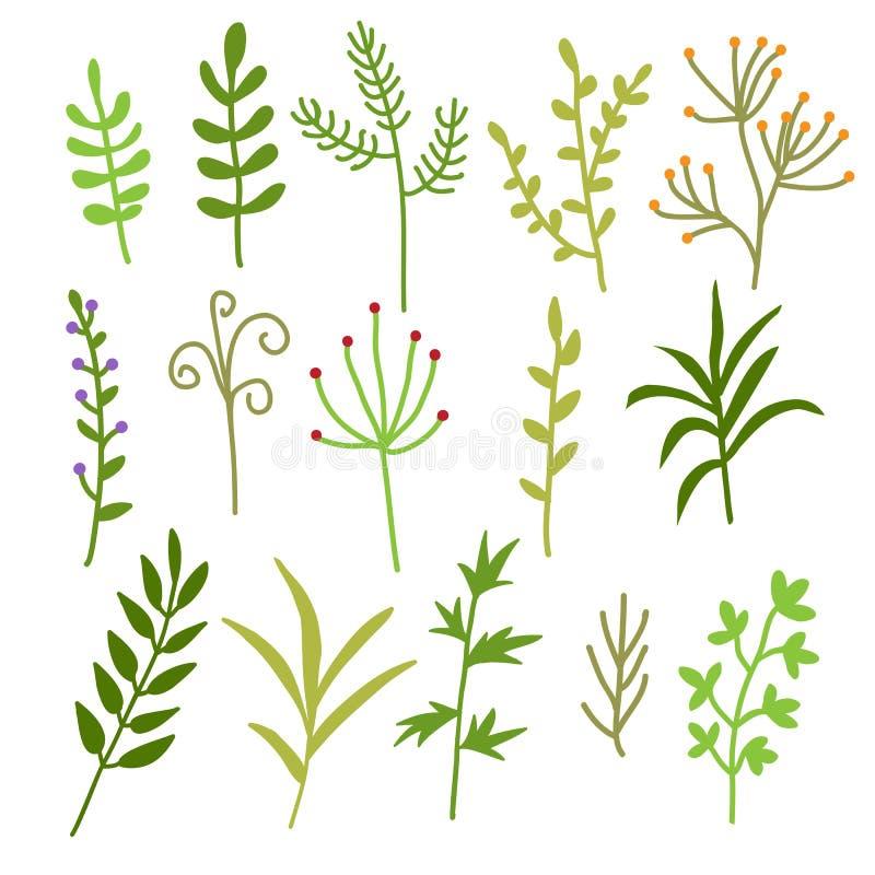 Blom- symboler ställde in, vektorsamlingen av blomman och bladbeståndsdelar stock illustrationer