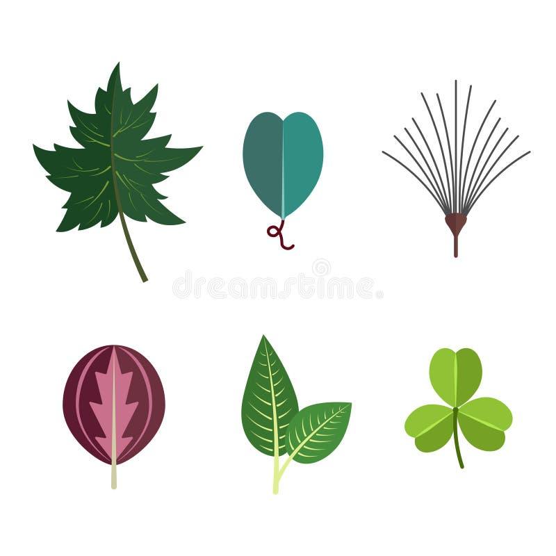 Blom- symbolsuppsättning för gröna tropiska sidor Höstträ och exotisk bladgarnering för botanisk bakgrund royaltyfri illustrationer
