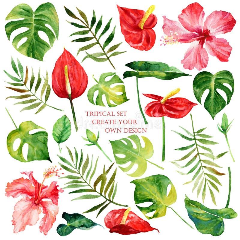 Blom- uppsättning med tropiska blommor och sidor royaltyfri illustrationer