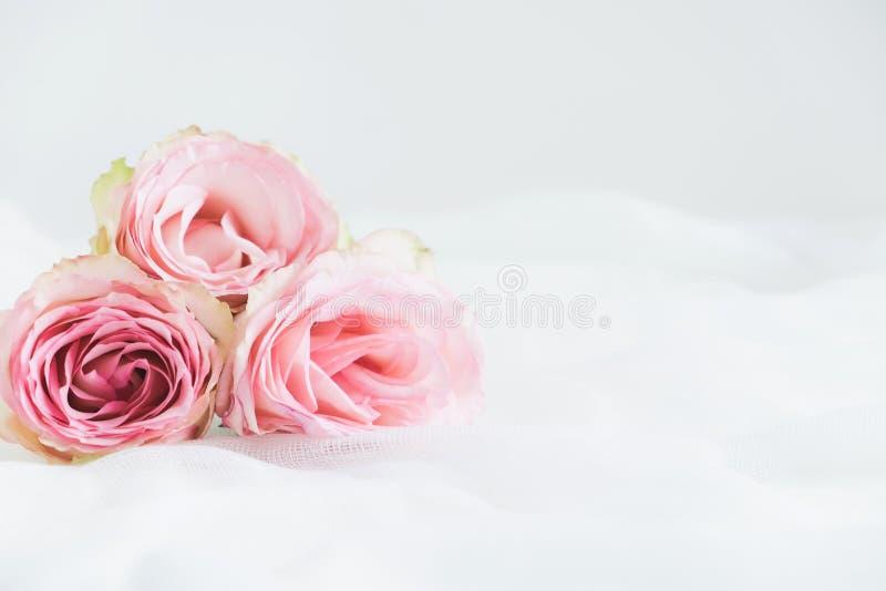 Blom- utformat materielfotografi royaltyfri bild