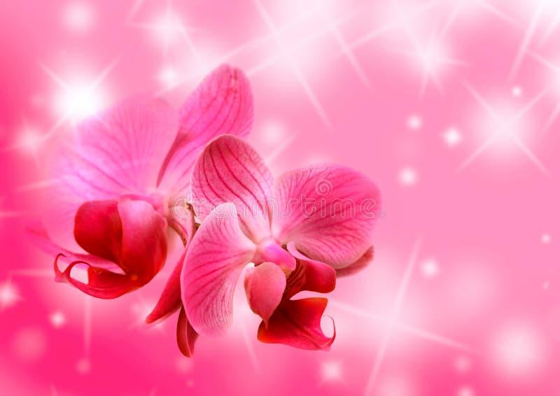 blom- valentiner för kort royaltyfri illustrationer
