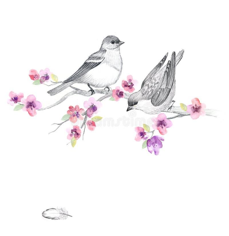 Blom- vattenfärgbakgrund med härliga blommor stock illustrationer