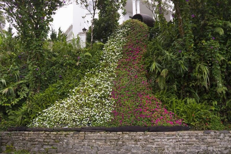 Blom- vattenfall, konstblommor royaltyfri bild