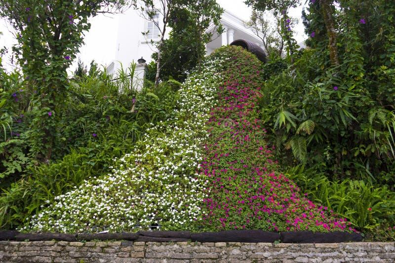 Blom- vattenfall, konstblommor arkivbild
