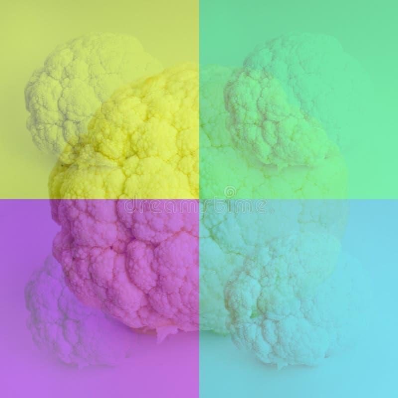 Blomkål som målas i gult, grönt, blått och purpurfärgat royaltyfria bilder