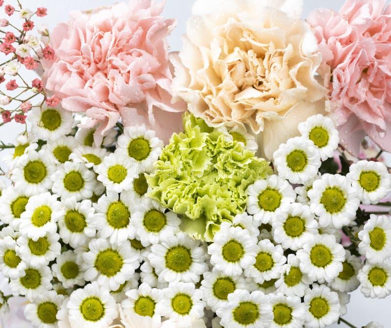Blomkors liv på vit bakgrund royaltyfri foto