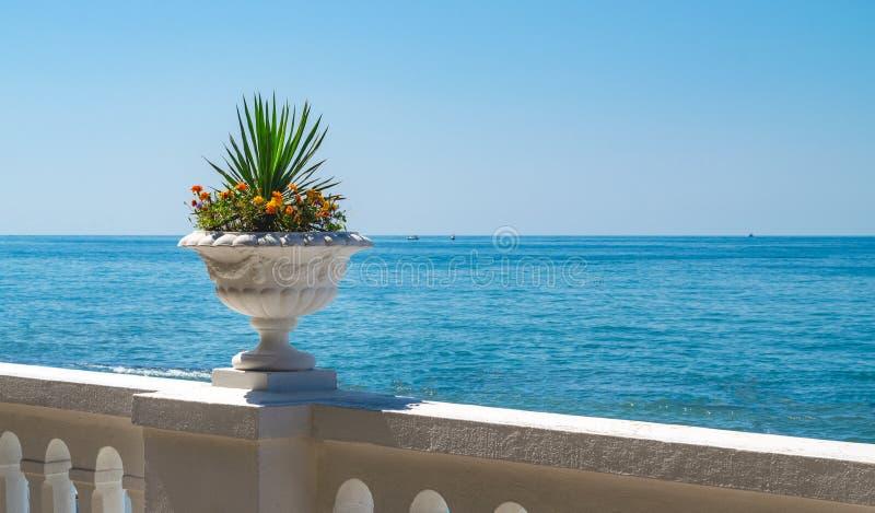Blomkruka med blommor på bakgrunden av havet arkivfoton