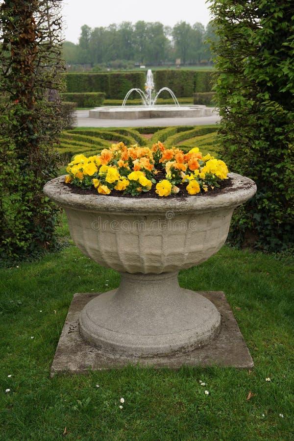 Blomkruka med gula blommor royaltyfri fotografi