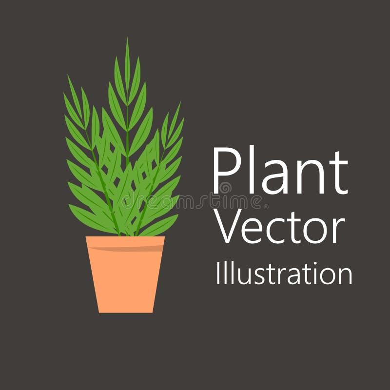 Blomkruka med växten vektor illustrationer