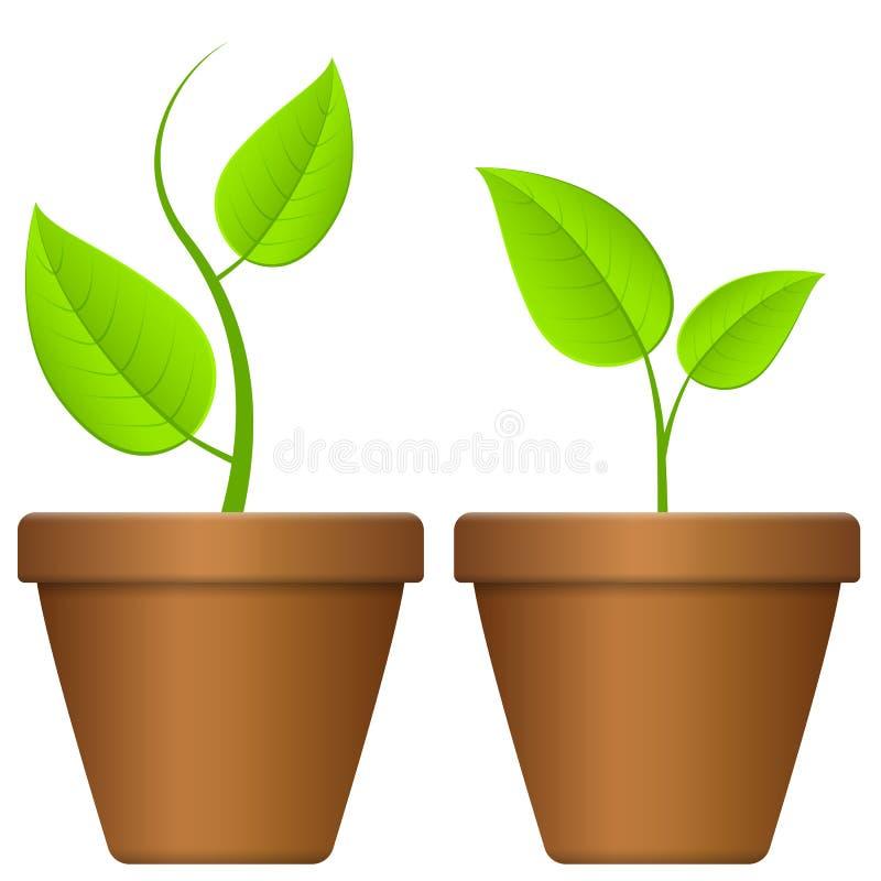 Blomkruka och växt stock illustrationer