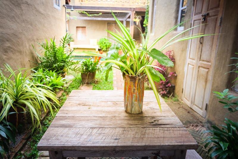 Blomkruka på trätabellen, bakgrund för semesterorthotell arkivbild